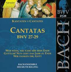 Cantatas Vol.9 (BWV 27/28/29)